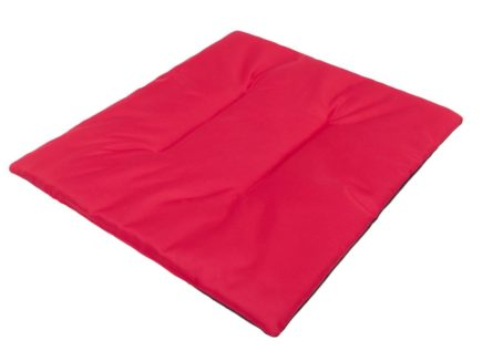 poduszka dla Schipperke