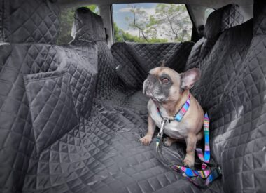 wodoodporna mata samochodowa dla psa